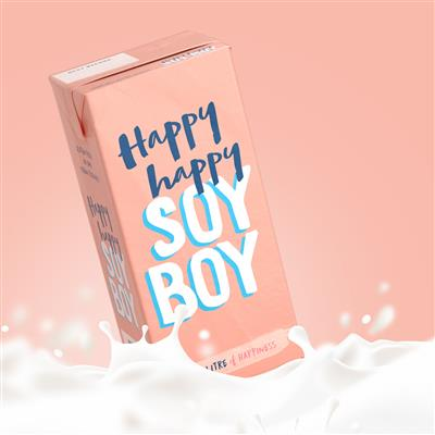 HAPPY HAPPY SOY BOY 6 X 1LT